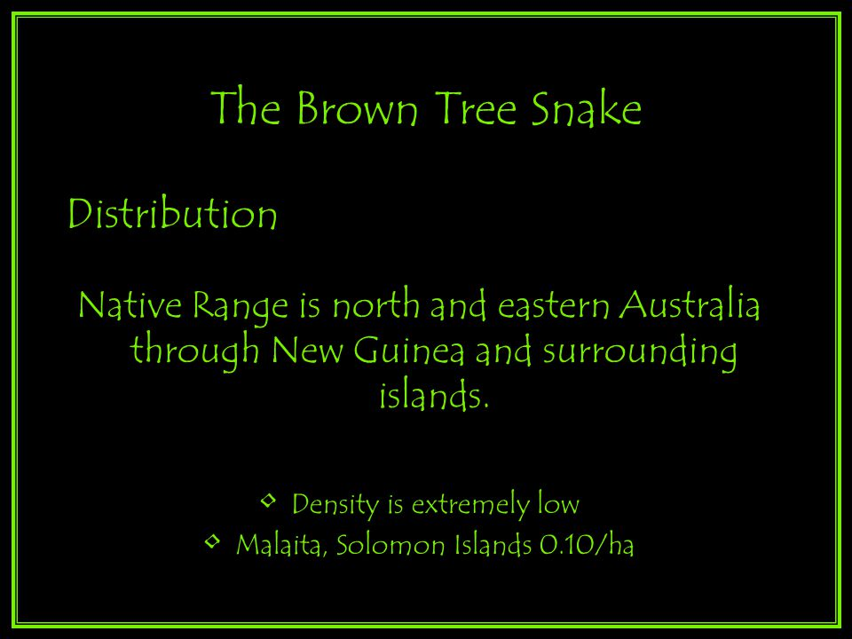 Distribution Native Range is north and eastern Australia through New Guinea and surrounding islands.