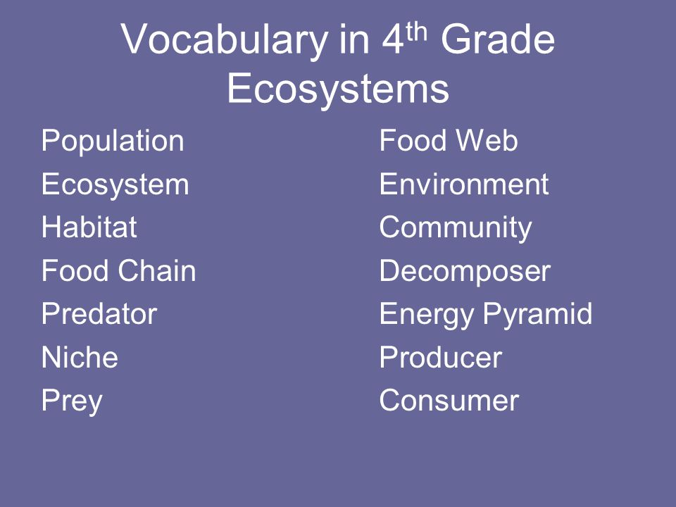 Vocabulary in 4 th Grade Ecosystems PopulationFood Web EcosystemEnvironment HabitatCommunity Food ChainDecomposer PredatorEnergy Pyramid NicheProducer PreyConsumer