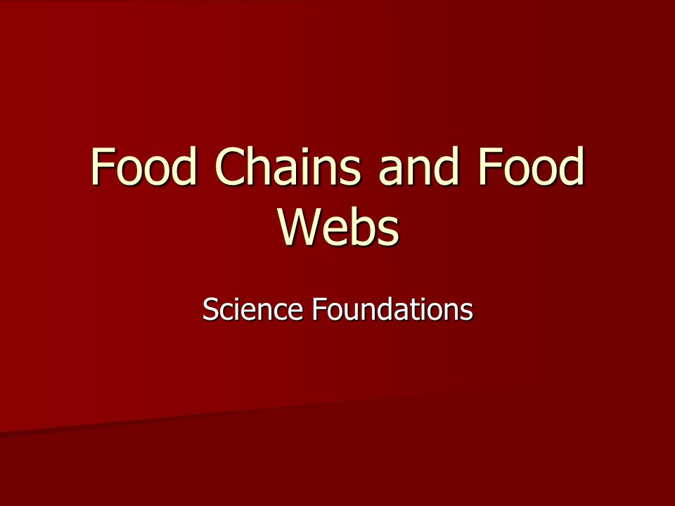 Food Chains and Food Webs Science Foundations
