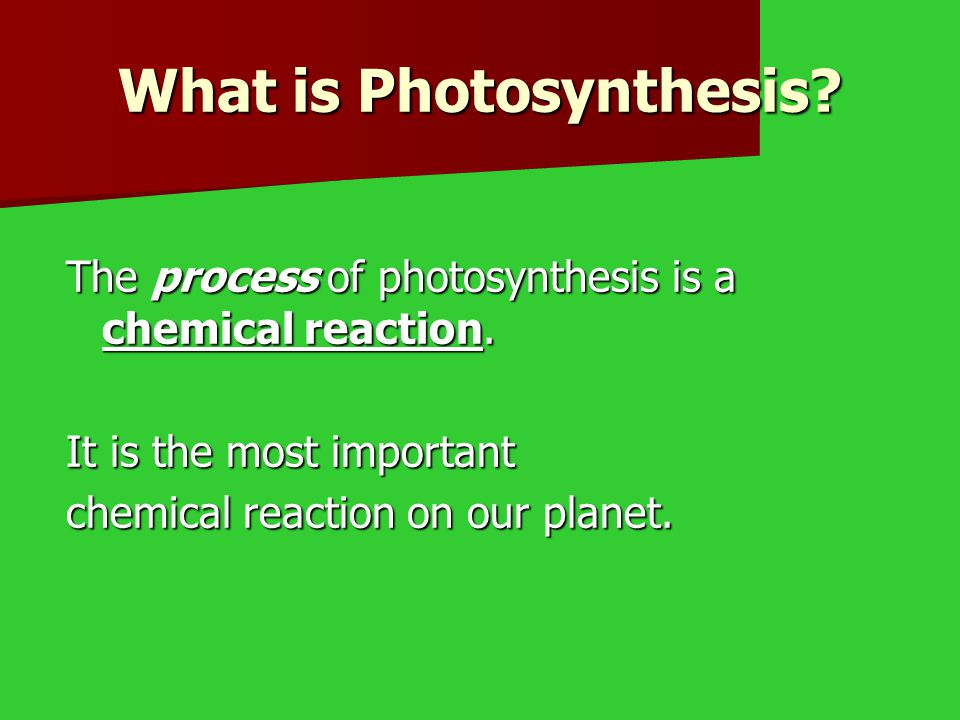 What is Photosynthesis.The process of photosynthesis is a chemical reaction.