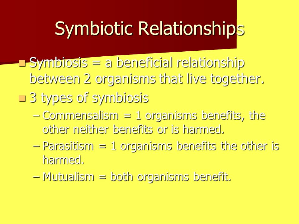 Symbiotic Relationships Symbiosis = a beneficial relationship between 2 organisms that live together.