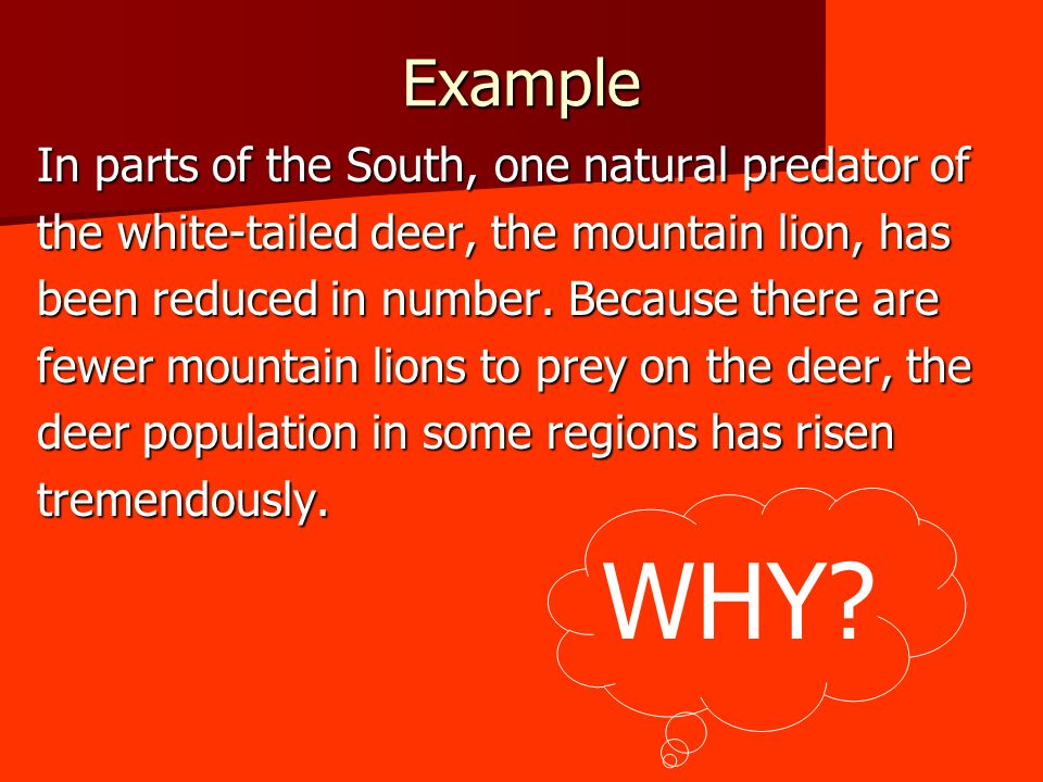 Example In parts of the South, one natural predator of the white-tailed deer, the mountain lion, has been reduced in number.