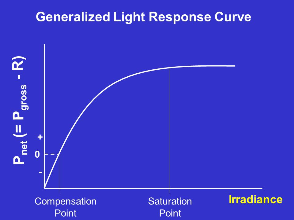 Generalized Light Response Curve Irradiance P net (= P gross - R) 0 - + Compensation Point Saturation Point