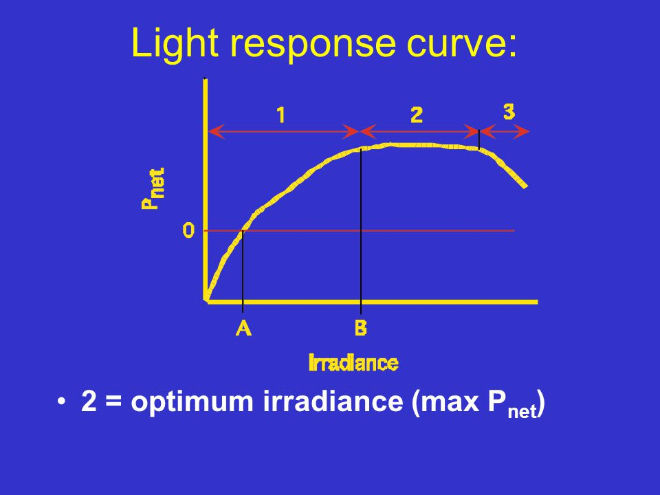 Light response curve: 2 = optimum irradiance (max P net )