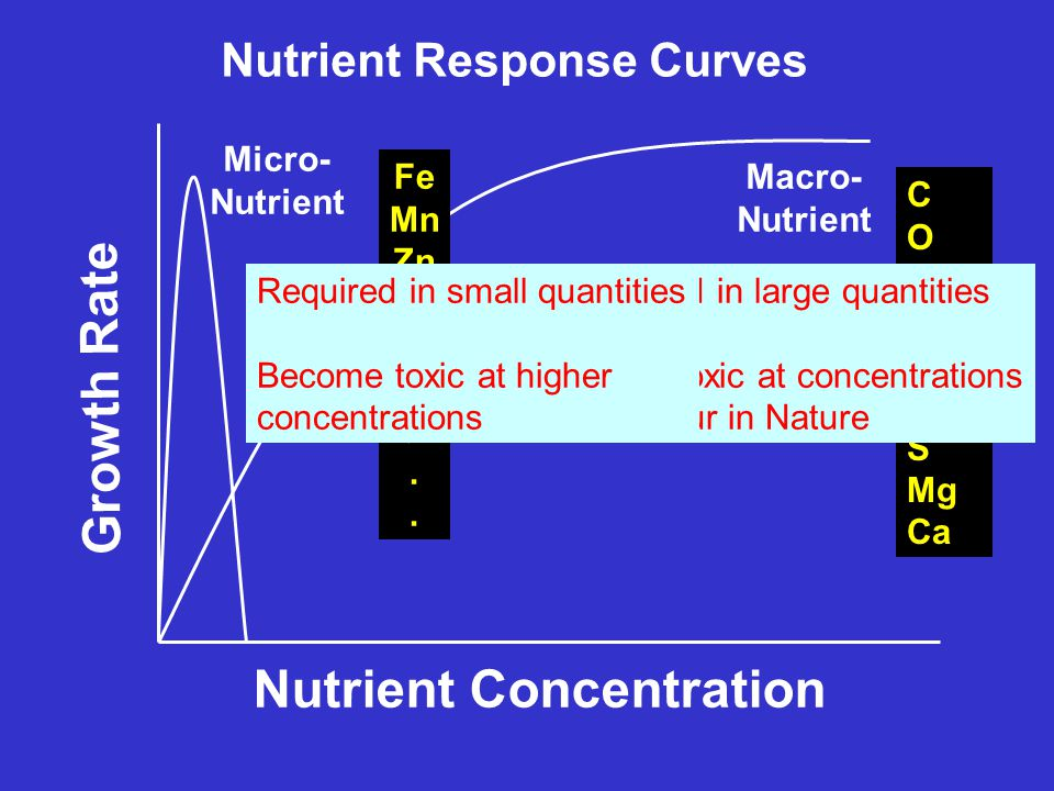 Nutrient Response Curves Growth Rate Nutrient Concentration Macro- Nutrient Micro- Nutrient C O H P K N S Mg Ca Fe Mn Zn Cu Mo B Cl. Required in large