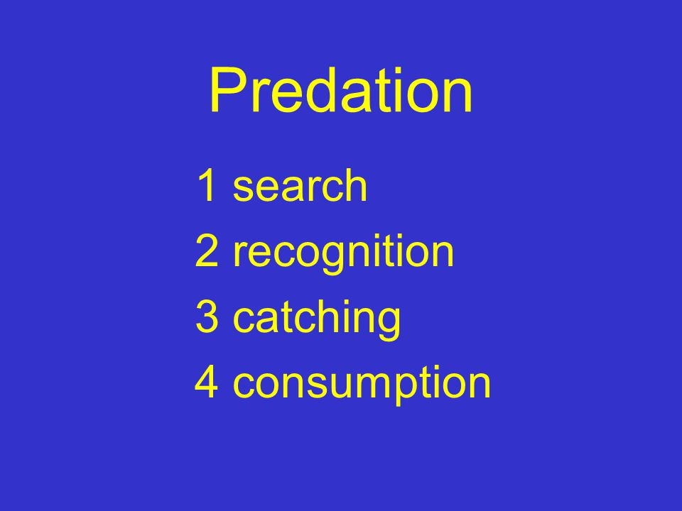 Predation 1 search 2 recognition 3 catching 4 consumption