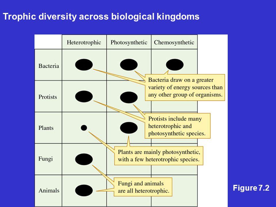 Trophic diversity across biological kingdoms Figure 7.2