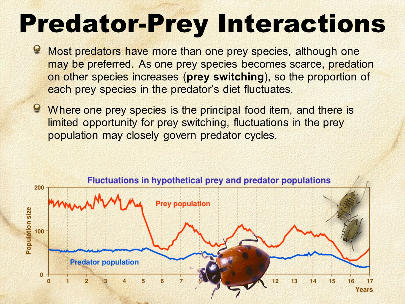 Most predators have more than one prey species, although one may be preferred. As one prey species becomes scarce, predation on other species increase
