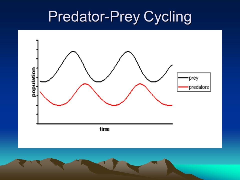 Predator-Prey Cycling
