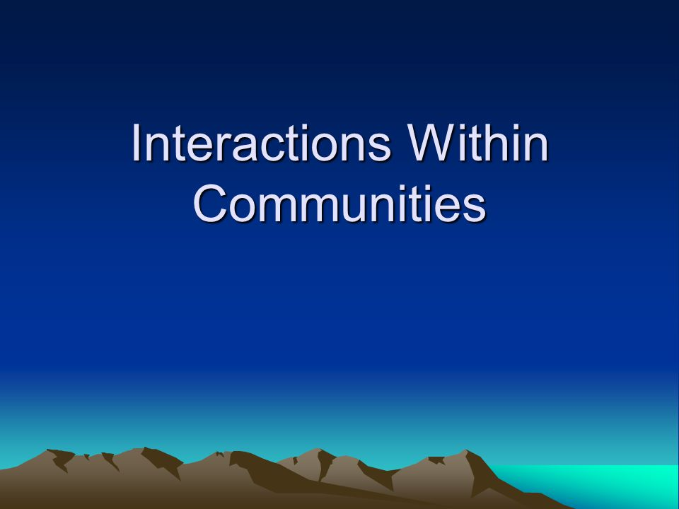 Interactions Within Communities
