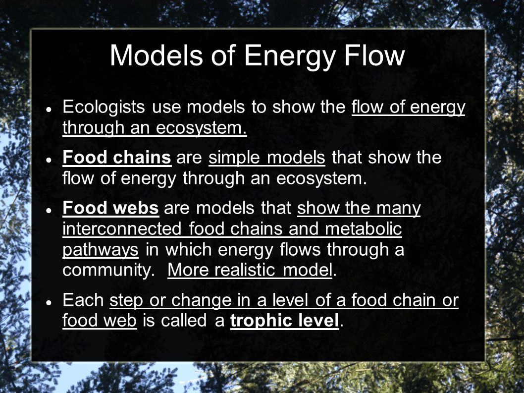 Models of Energy Flow Ecologists use models to show the flow of energy through an ecosystem. Food chains are simple models that show the flow of energ