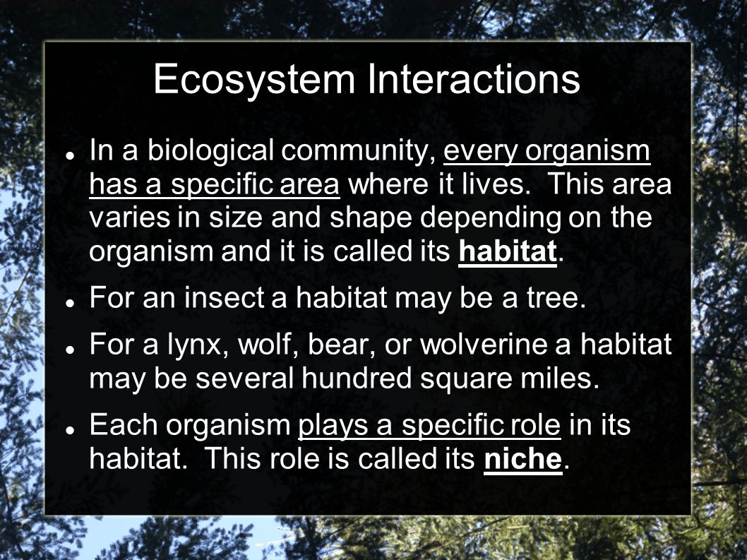 Ecosystem Interactions In a biological community, every organism has a specific area where it lives. This area varies in size and shape depending on t