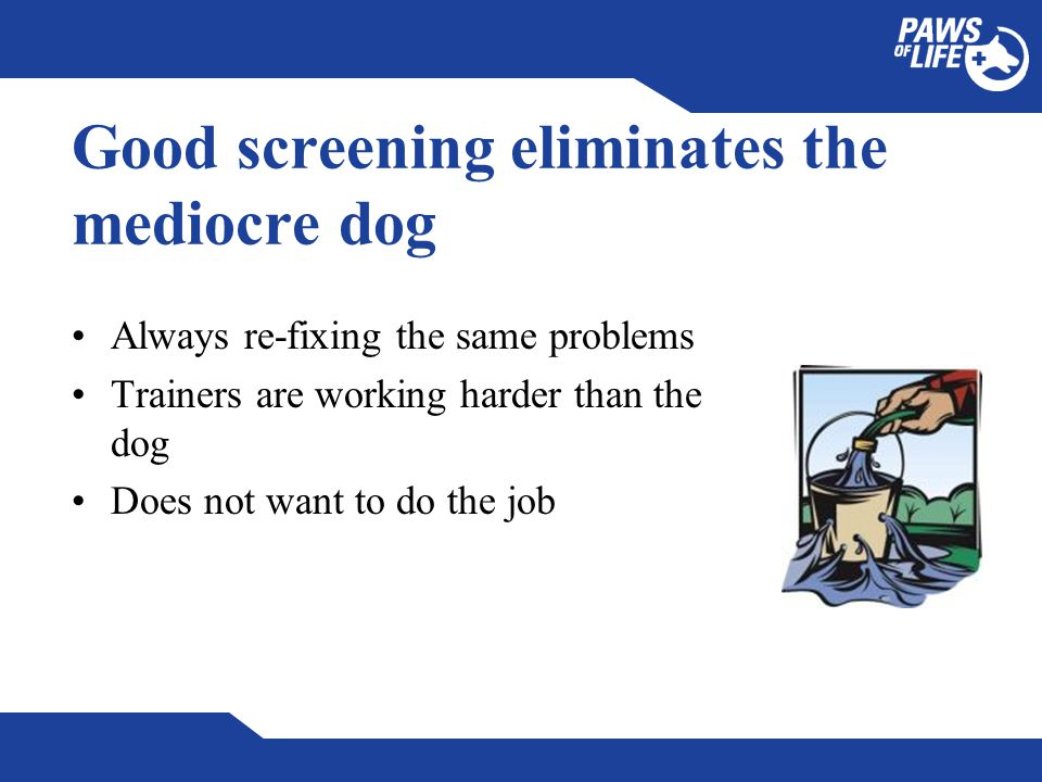 Good screening eliminates the mediocre dog Always re-fixing the same problems Trainers are working harder than the dog Does not want to do the job