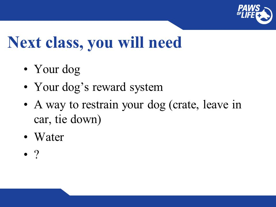 Next class, you will need Your dog Your dog's reward system A way to restrain your dog (crate, leave in car, tie down) Water ?