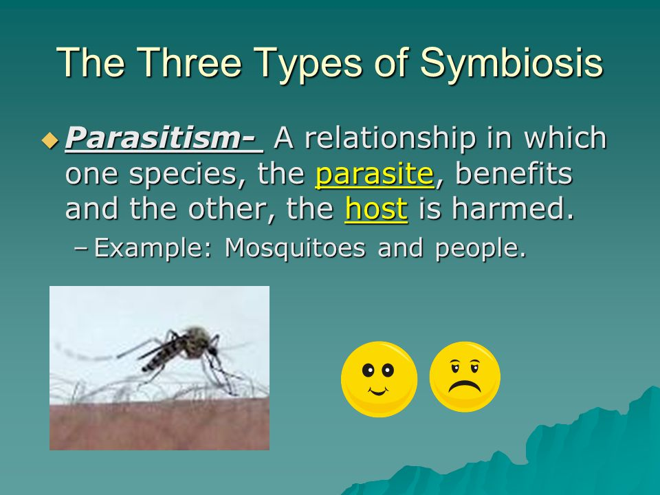 The Three Types of Symbiosis  2) Commensalism: A relationship in which one organism benefits and the other is unaffected.
