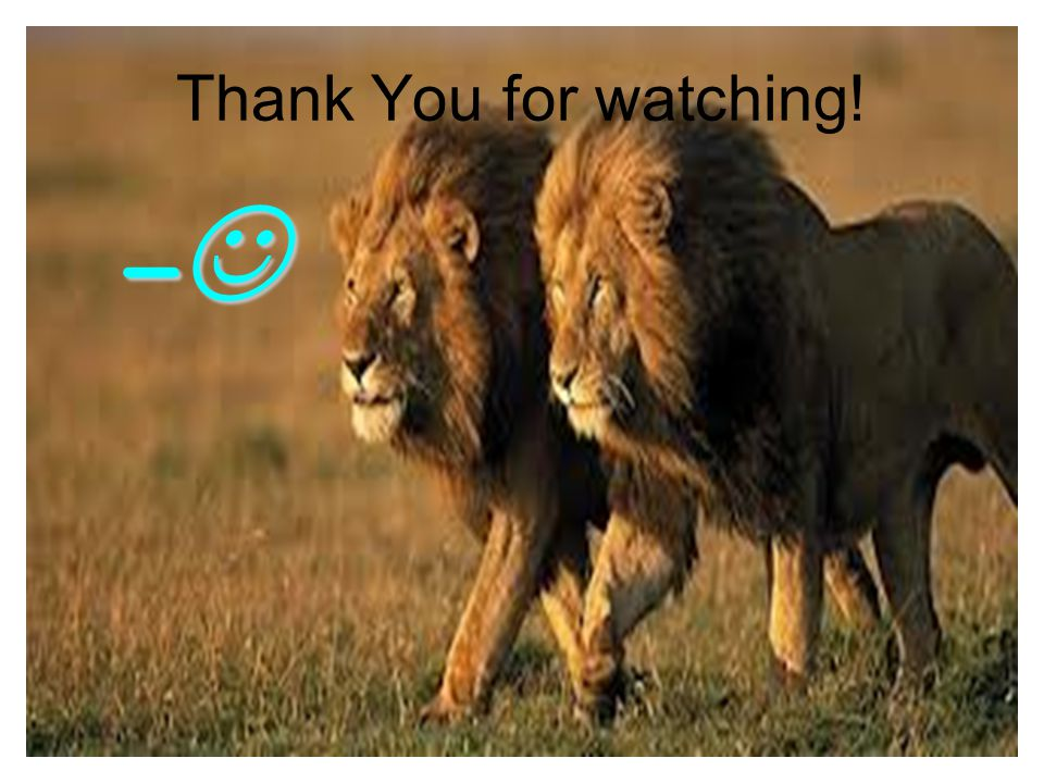 Thank You for watching! –