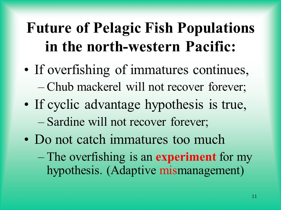 11 Future of Pelagic Fish Populations in the north-western Pacific: If overfishing of immatures continues, –Chub mackerel will not recover forever; If cyclic advantage hypothesis is true, –Sardine will not recover forever; Do not catch immatures too much –The overfishing is an experiment for my hypothesis.