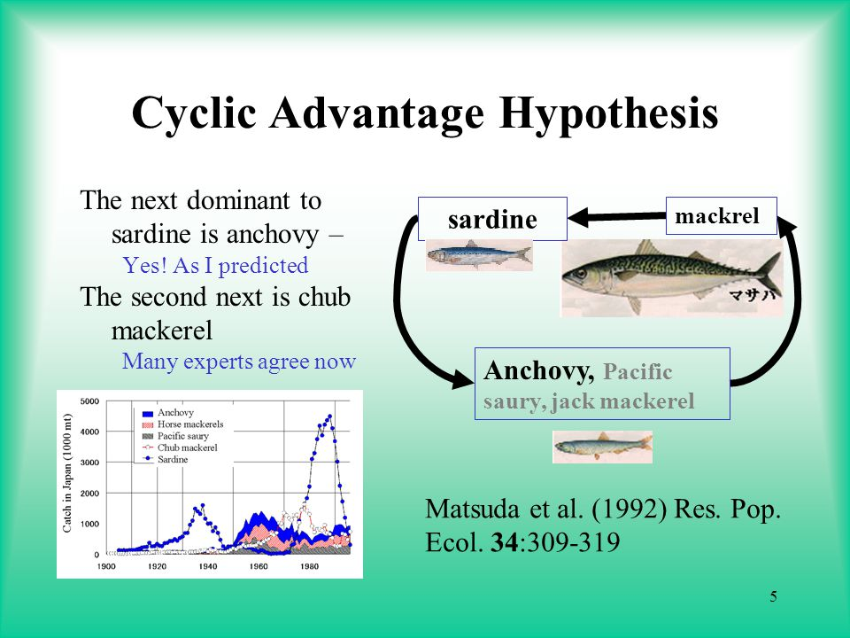5 Cyclic Advantage Hypothesis The next dominant to sardine is anchovy – Yes.