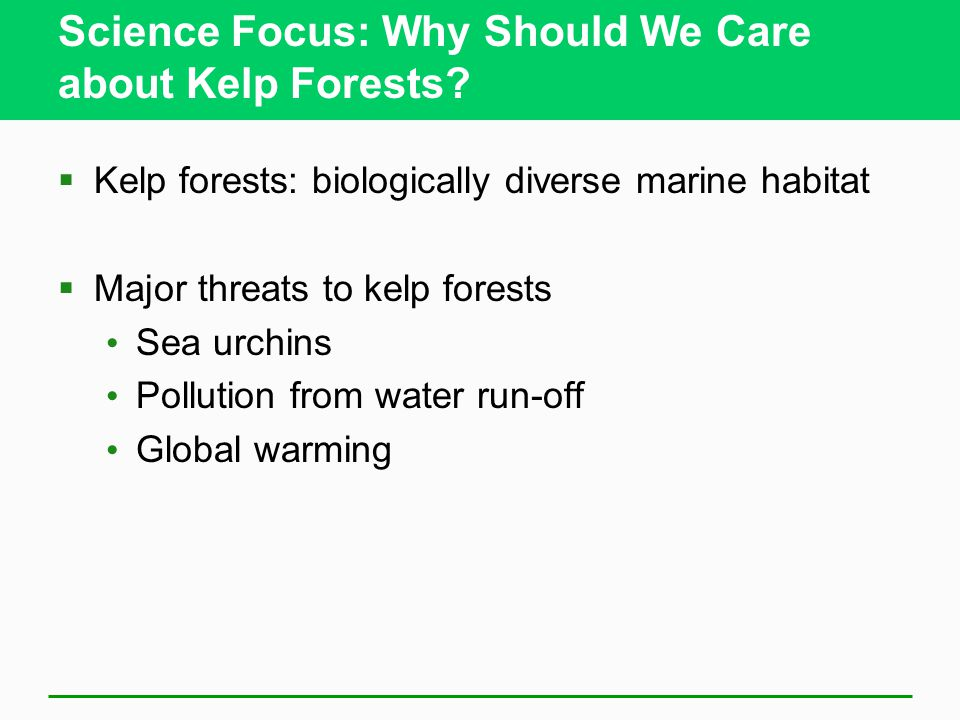 Science Focus: Why Should We Care about Kelp Forests.