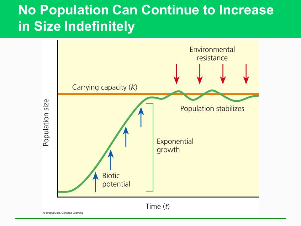 No Population Can Continue to Increase in Size Indefinitely