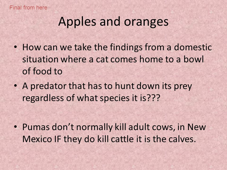 Apples and oranges How can we take the findings from a domestic situation where a cat comes home to a bowl of food to A predator that has to hunt down its prey regardless of what species it is .