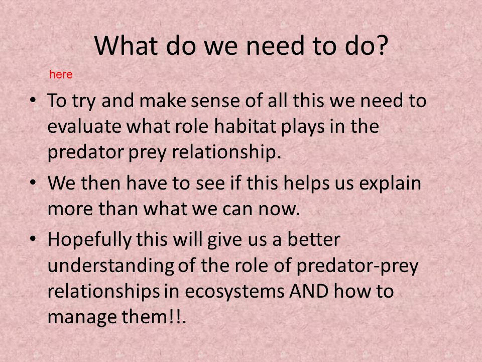 What do we need to do? To try and make sense of all this we need to evaluate what role habitat plays in the predator prey relationship. We then have t