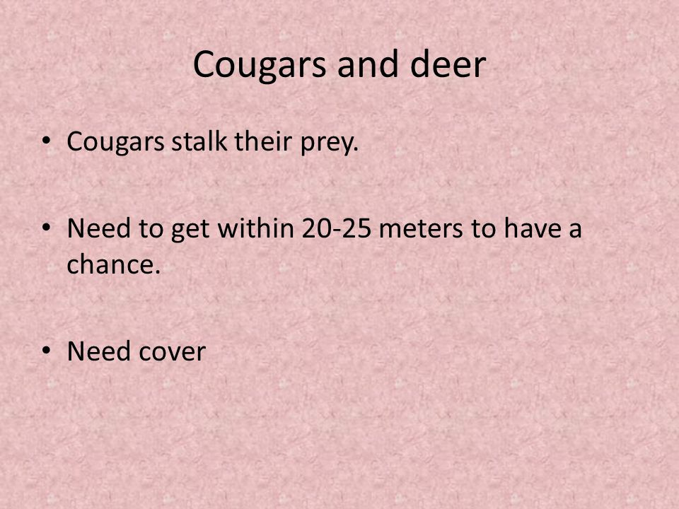 Cougars and deer Cougars stalk their prey. Need to get within 20-25 meters to have a chance.