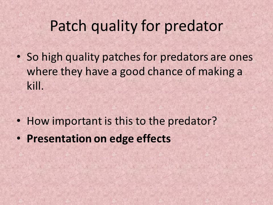 Patch quality for predator So high quality patches for predators are ones where they have a good chance of making a kill.