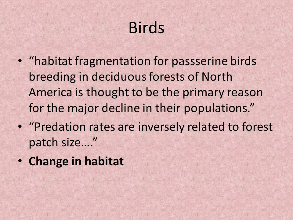 Birds habitat fragmentation for passserine birds breeding in deciduous forests of North America is thought to be the primary reason for the major decline in their populations. Predation rates are inversely related to forest patch size…. Change in habitat