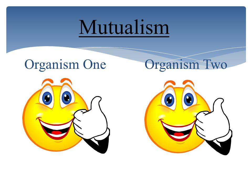Commensalism Organism One Organism Two