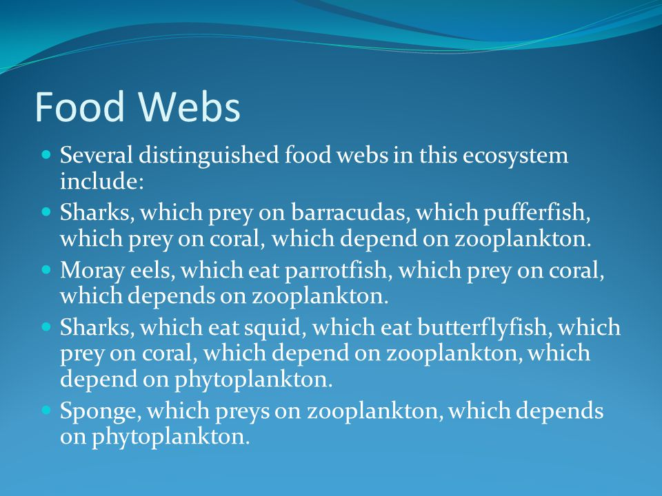 Food Webs Several distinguished food webs in this ecosystem include: Sharks, which prey on barracudas, which pufferfish, which prey on coral, which depend on zooplankton.