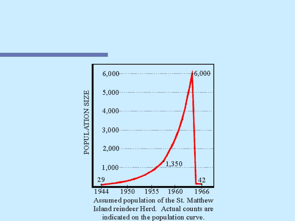 Density Independent Limiting Factors n Boom and Bust Growth Curves –Populations grow exponentially then crash, then back again n Aphids feed on plant buds that can be washed away in a rain storm