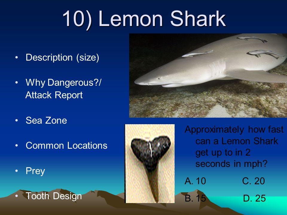Shark Attack Statistics Normal statistics Sharks fearing humans