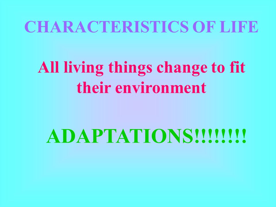 CHARACTERISTICS OF LIFE All living things change to fit their environment ADAPTATIONS!!!!!!!!