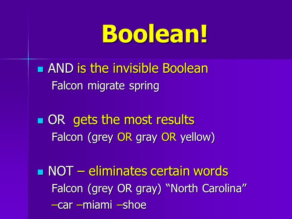 Boolean.