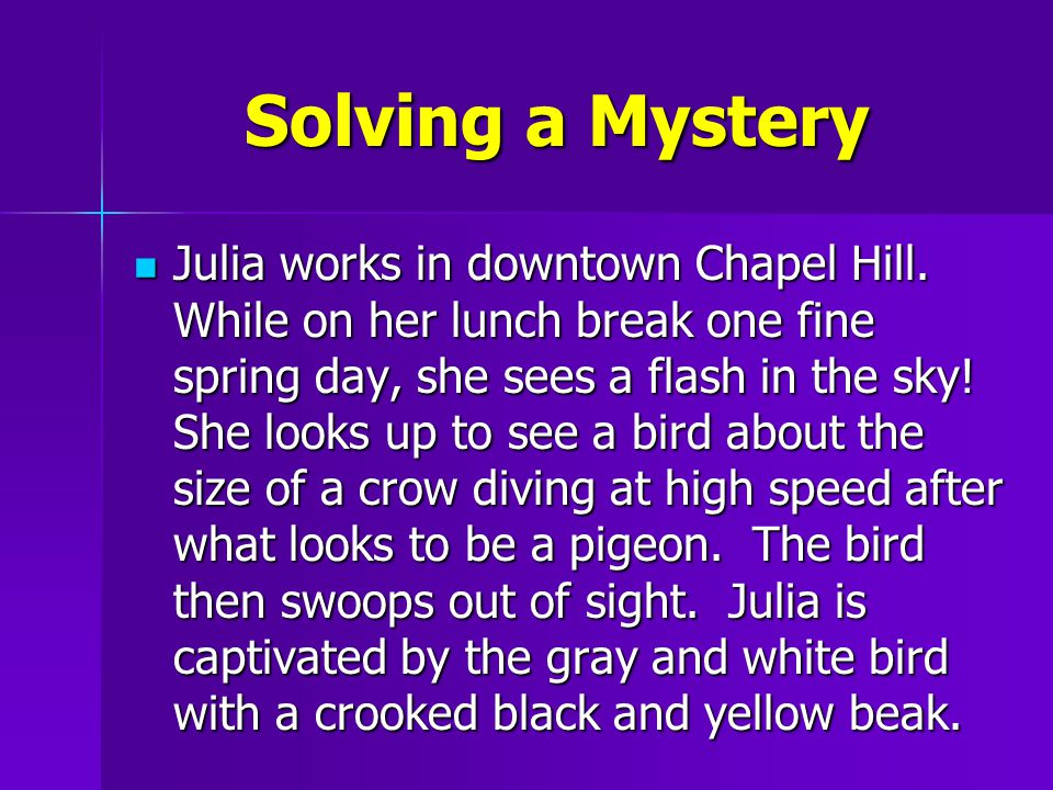 Solving a Mystery Julia works in downtown Chapel Hill.