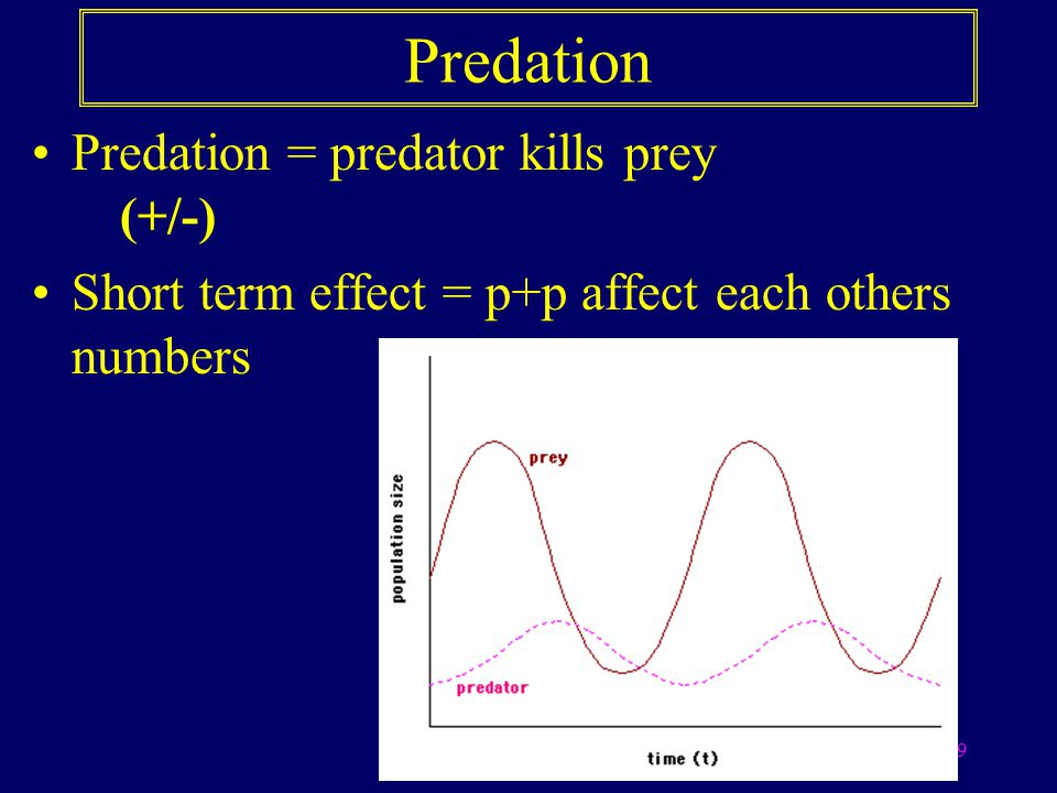 10 Two species of mites demonstrate the coupled oscillations of predator and prey densities Interpretation: It is apparent from the graph that both populations showed cyclical behaviour, and that the predator population generally tracked (lagged) the peaks in the prey population.