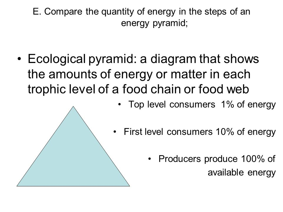 E. Compare the quantity of energy in the steps of an energy pyramid; Ecological pyramid: a diagram that shows the amounts of energy or matter in each