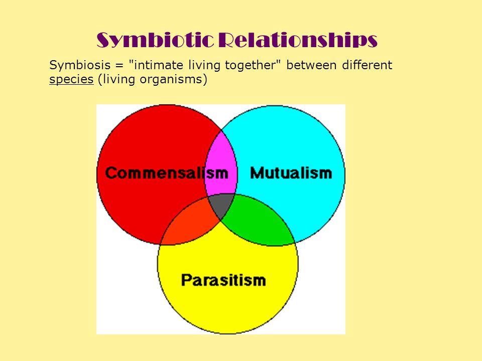 Symbiosis =