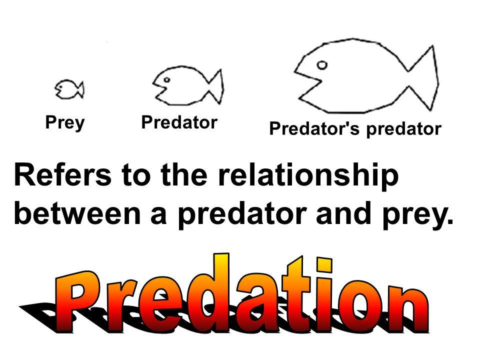 PreyPredator Predator's predator Refers to the relationship between a predator and prey.
