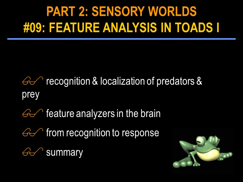 $ recognition & localization of predators & prey $ feature analyzers in the brain $ from recognition to response $ summary PART 2: SENSORY WORLDS #09: