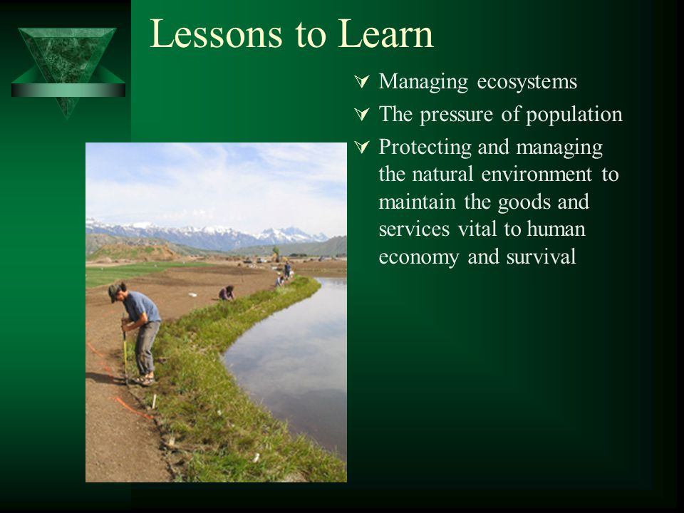 Lessons to Learn  Managing ecosystems  The pressure of population  Protecting and managing the natural environment to maintain the goods and services vital to human economy and survival