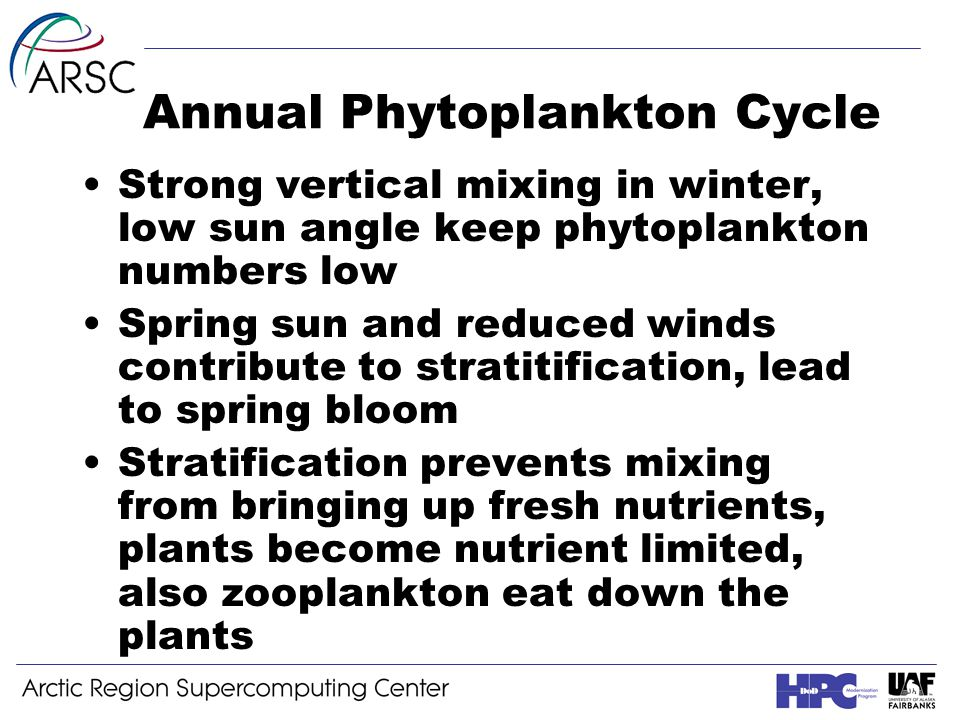 Annual Phytoplankton Cycle Strong vertical mixing in winter, low sun angle keep phytoplankton numbers low Spring sun and reduced winds contribute to stratitification, lead to spring bloom Stratification prevents mixing from bringing up fresh nutrients, plants become nutrient limited, also zooplankton eat down the plants