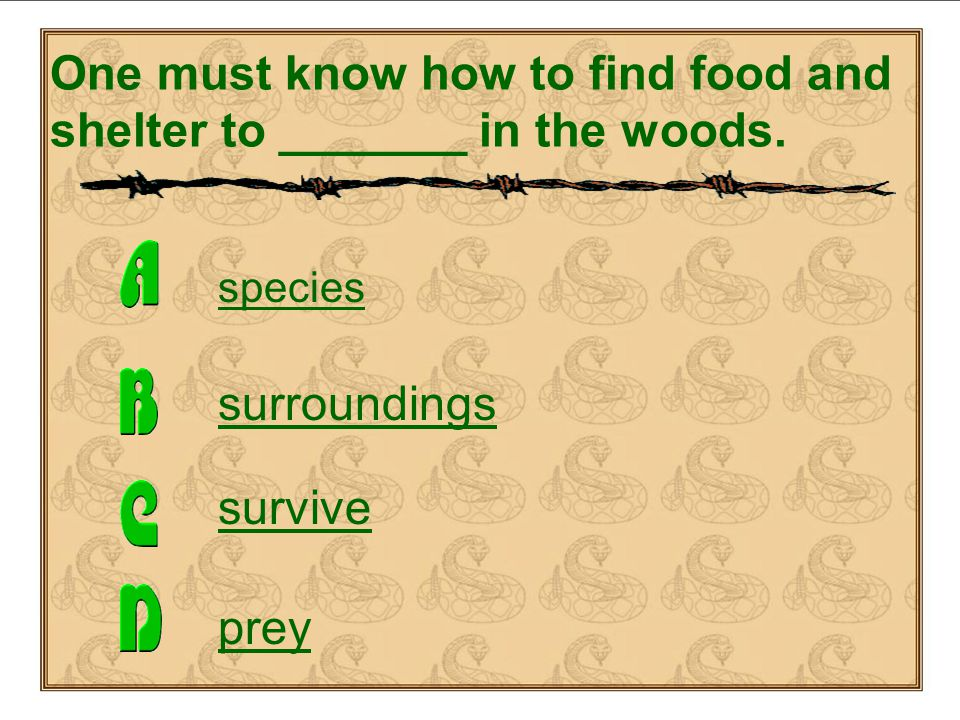 surroundings – plural noun – the objects, influences or conditions of a place