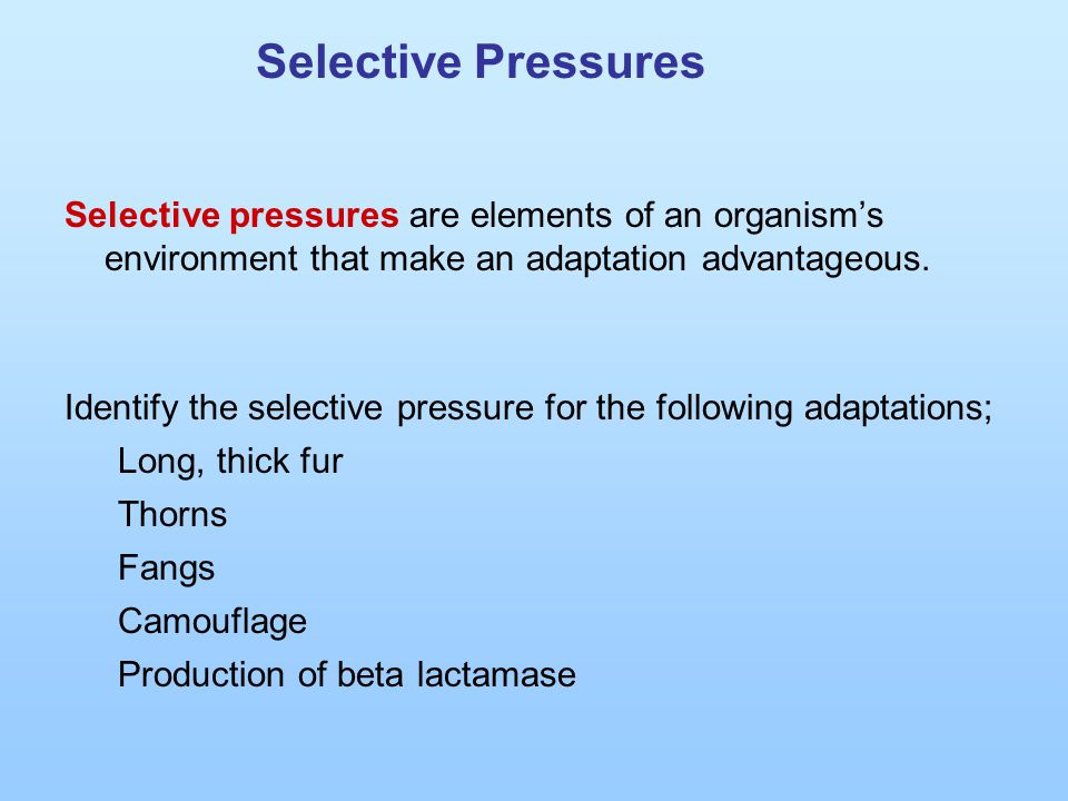 Selective Pressures Selective pressures are elements of an organism's environment that make an adaptation advantageous. Identify the selective pressur