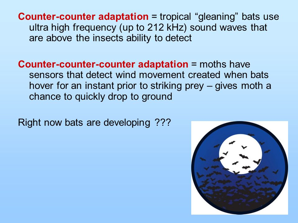 "Counter-counter adaptation = tropical ""gleaning"" bats use ultra high frequency (up to 212 kHz) sound waves that are above the insects ability to detec"
