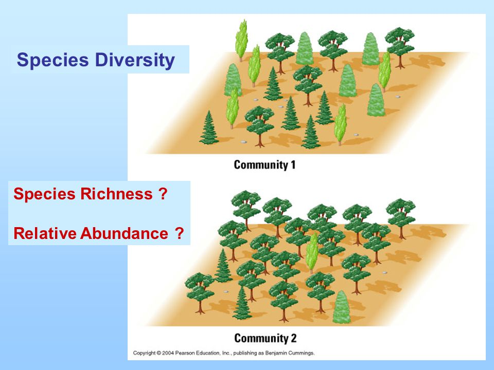Species Richness ? Relative Abundance ? Species Diversity