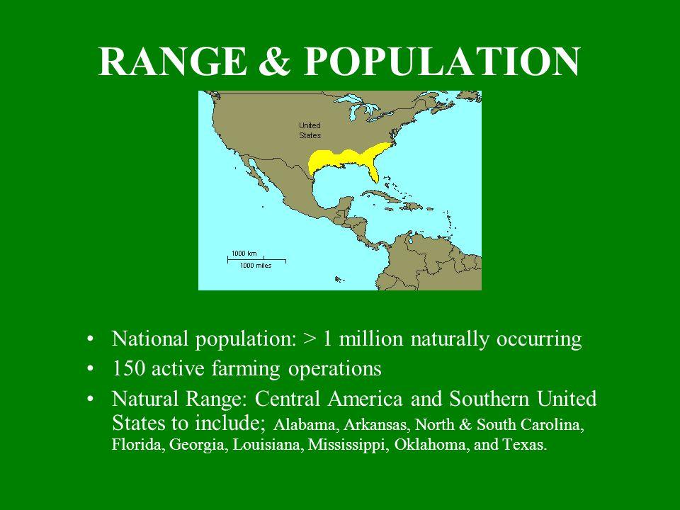 RANGE & POPULATION National population: > 1 million naturally occurring 150 active farming operations Natural Range: Central America and Southern United States to include; Alabama, Arkansas, North & South Carolina, Florida, Georgia, Louisiana, Mississippi, Oklahoma, and Texas.