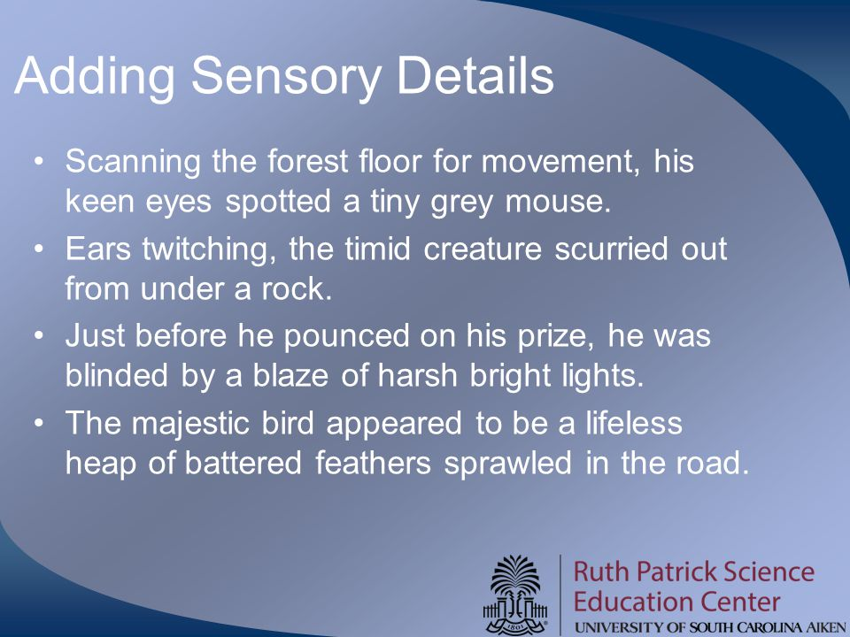 Adding Sensory Details Scanning the forest floor for movement, his keen eyes spotted a tiny grey mouse.