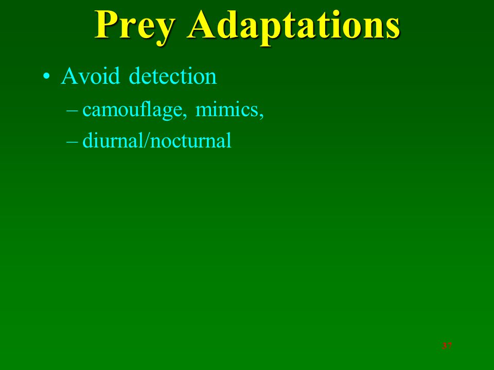 37 Prey Adaptations Avoid detection –camouflage, mimics, –diurnal/nocturnal